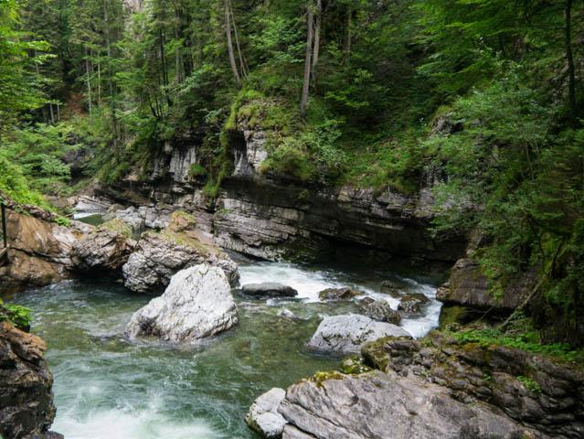 Breitachklamm Wasser und Bäume (1 von 1)
