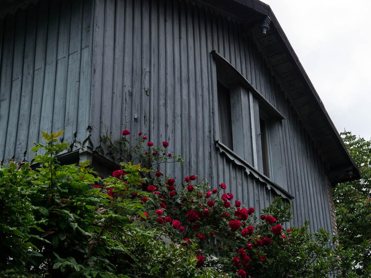 Holzhaus mit Rosen (1 von 1)
