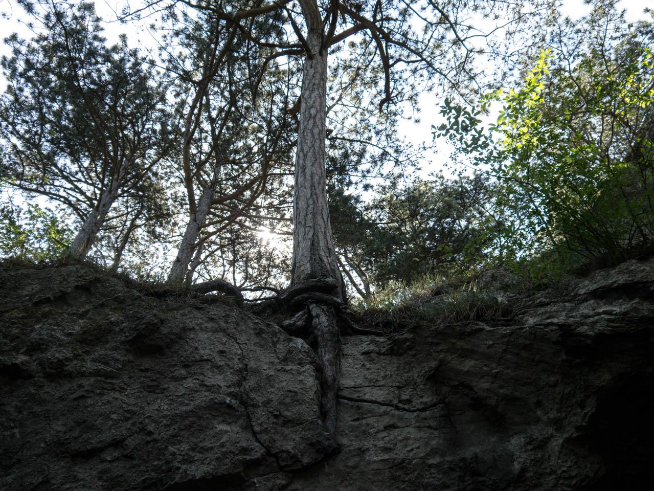 Königshöhle (1 von 1)