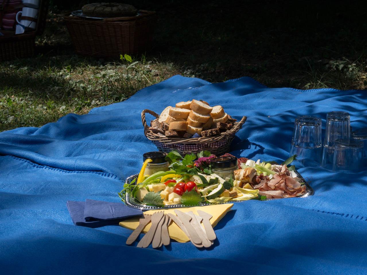 Picknick (1 von 1)