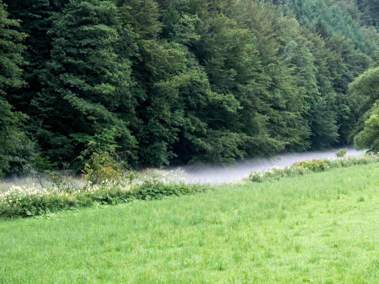 Nebel über der Bigge (1 von 1)