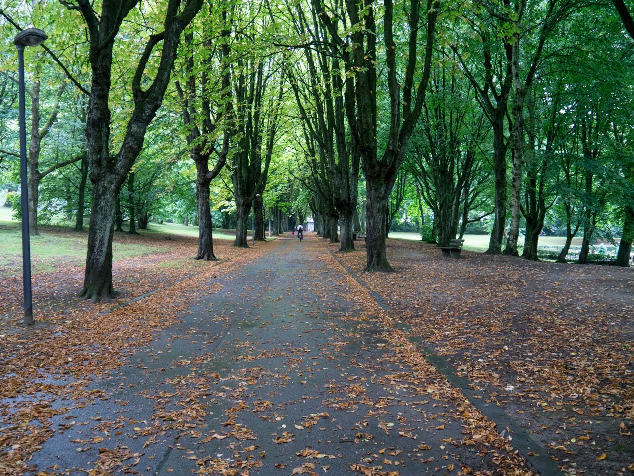herbstlicher Stadtgarten (1 von 1)