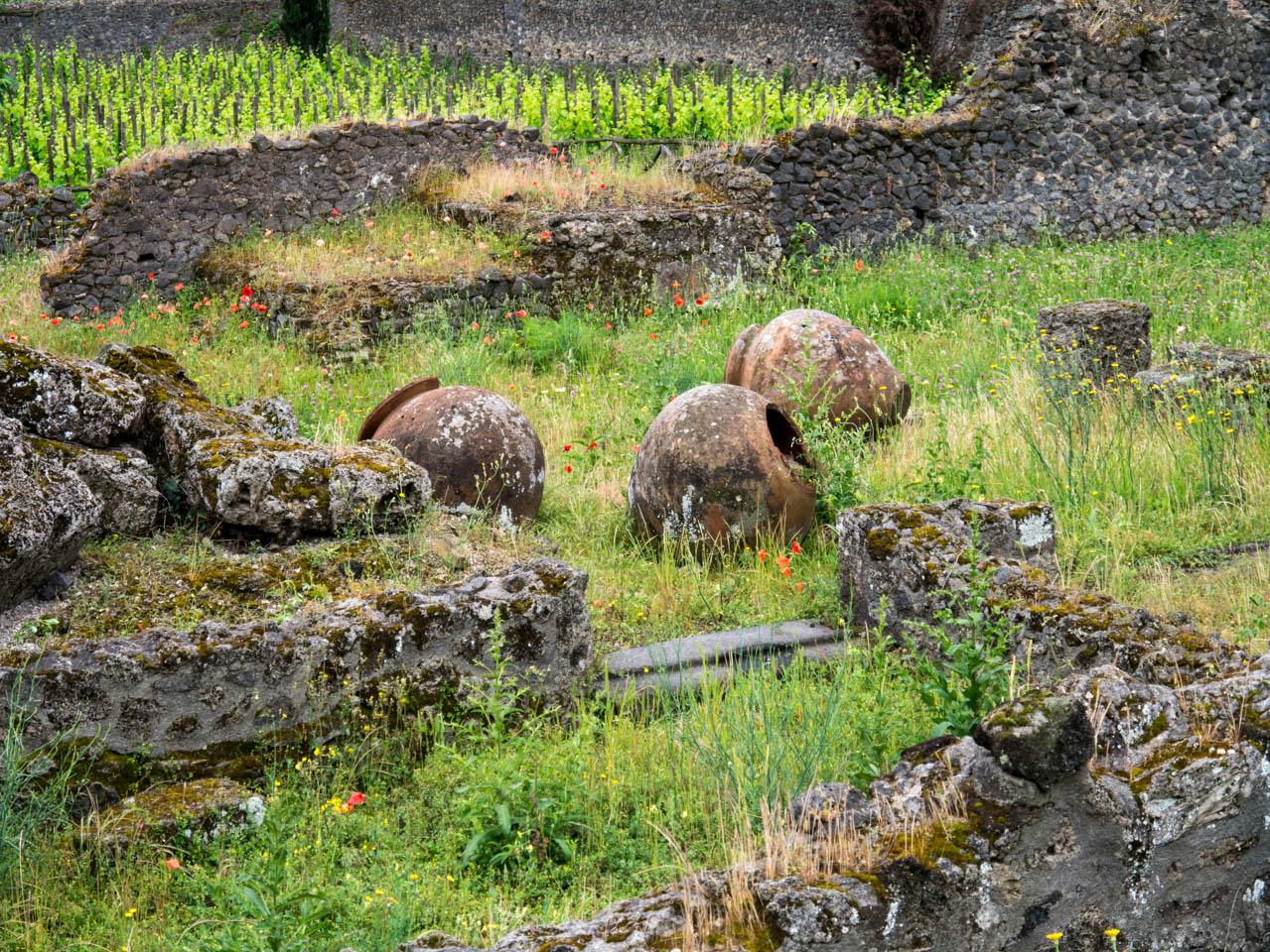 Garten mit Ruinen (1 von 1)