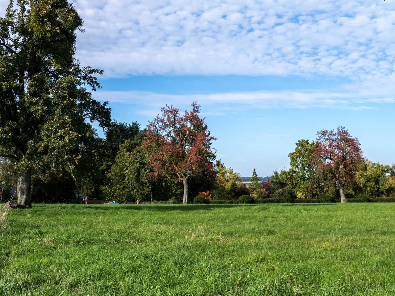 perfektes Herbstwetter (1 von 1)