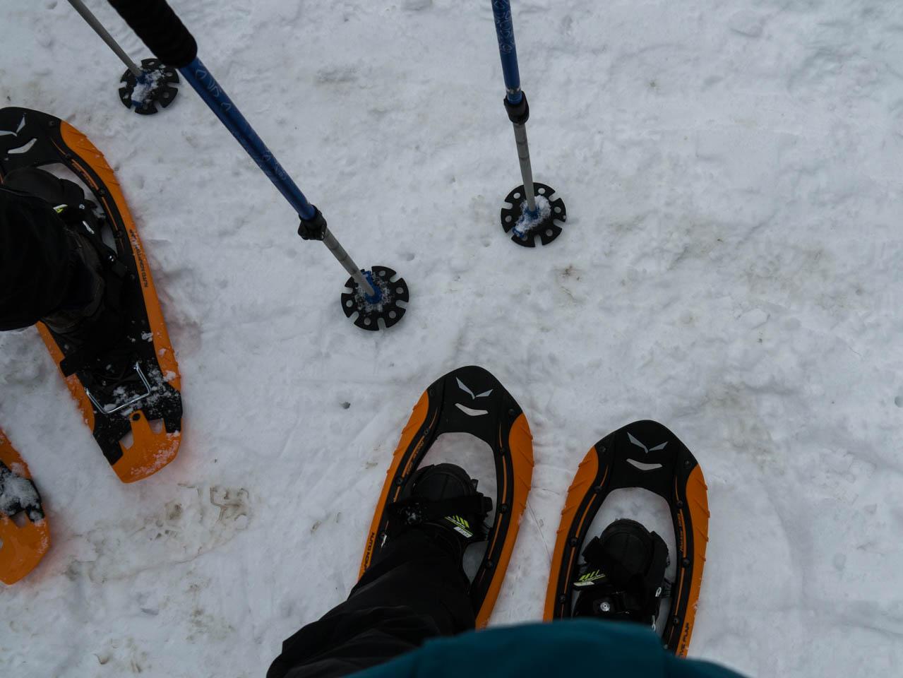Schneeschuhe (1 von 1)