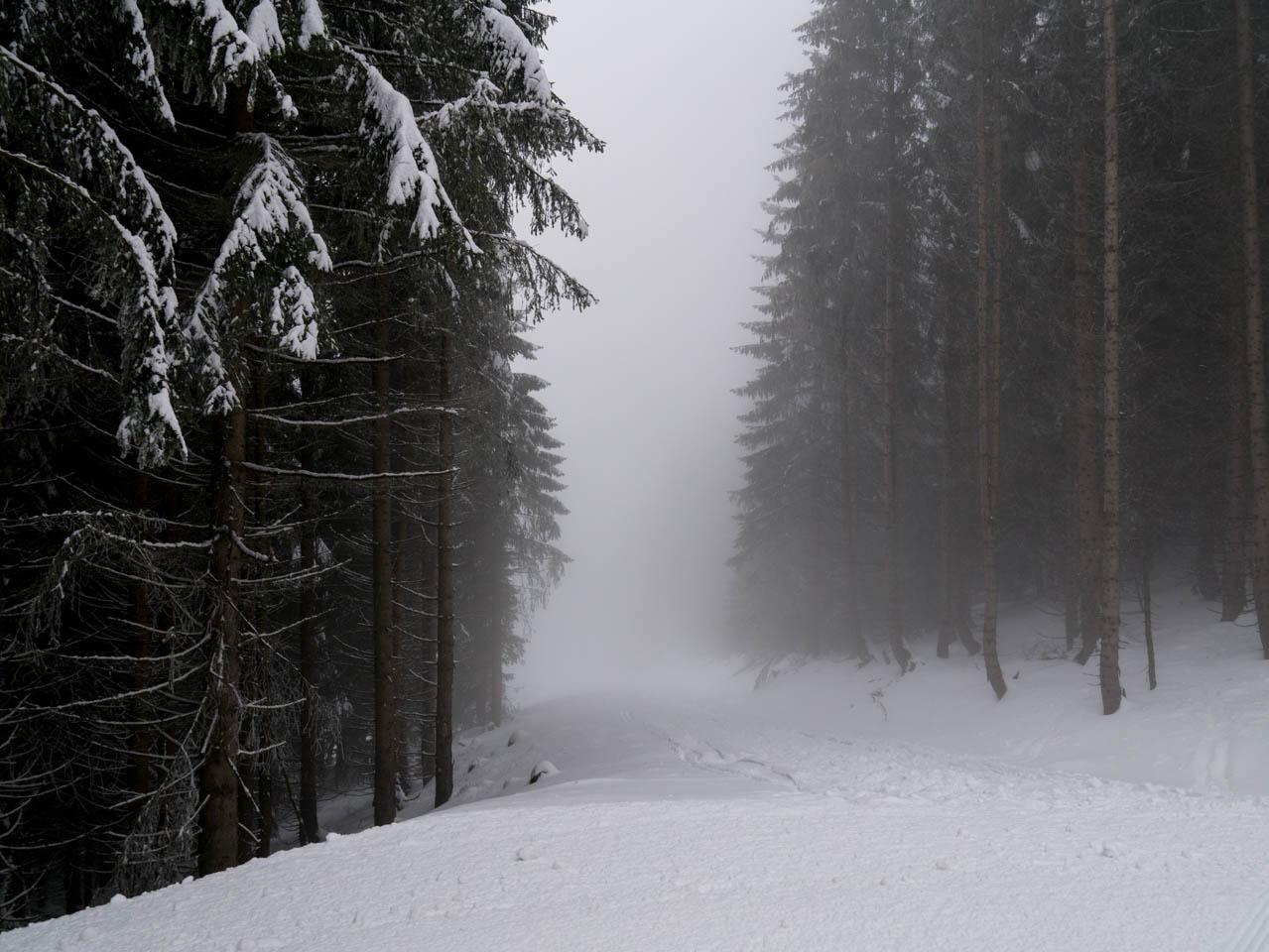 Winternebel (1 von 1)
