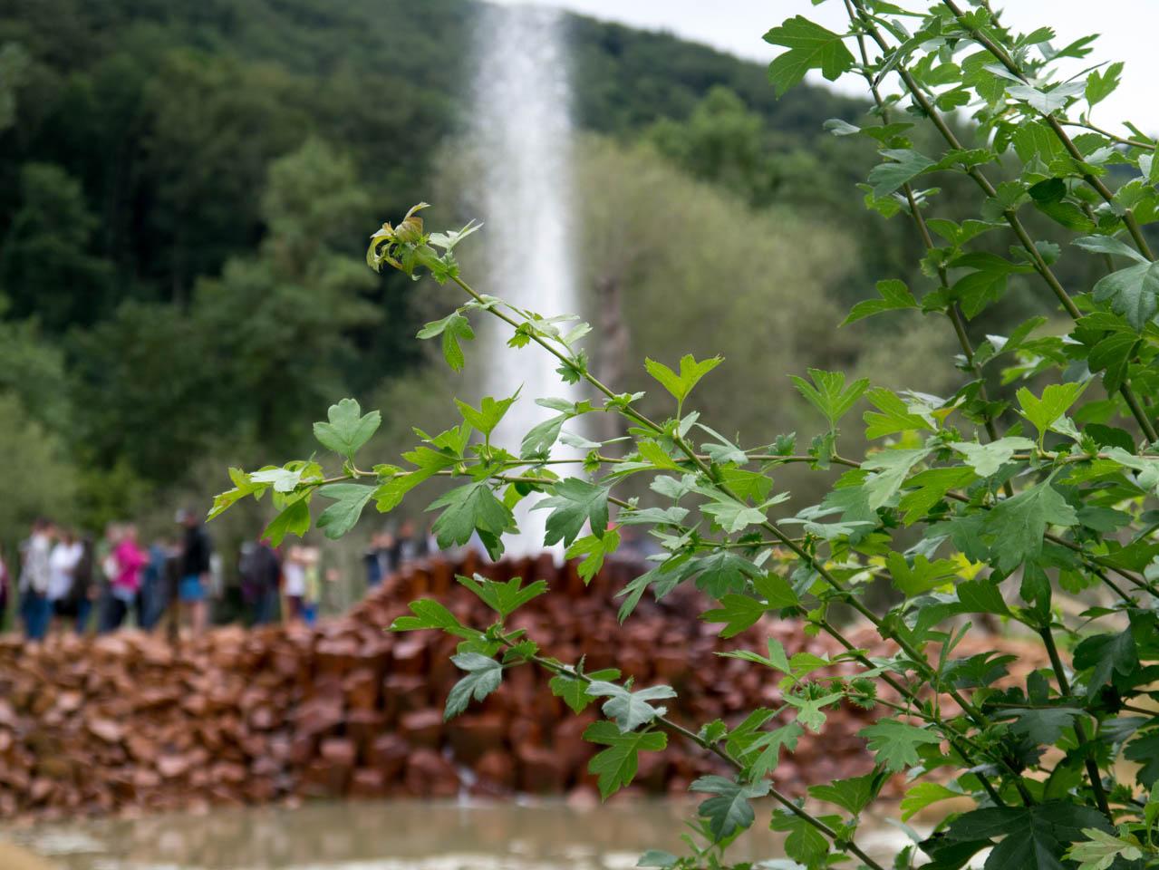Naturgewalten im Naturschutzgebiet (1 von 1)