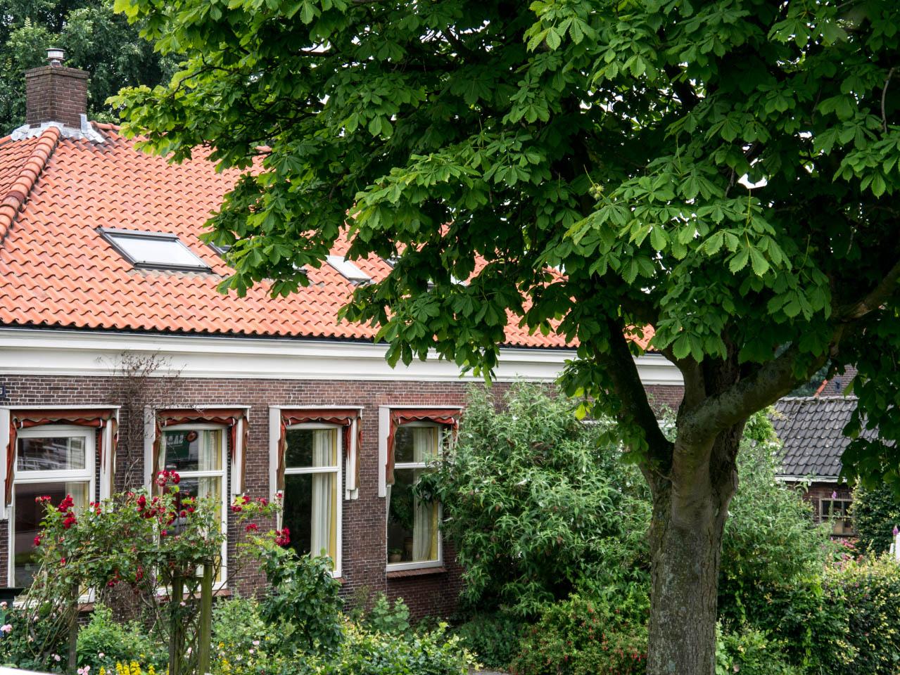 auch-das-ist-amsterdam-noord-1-von-1